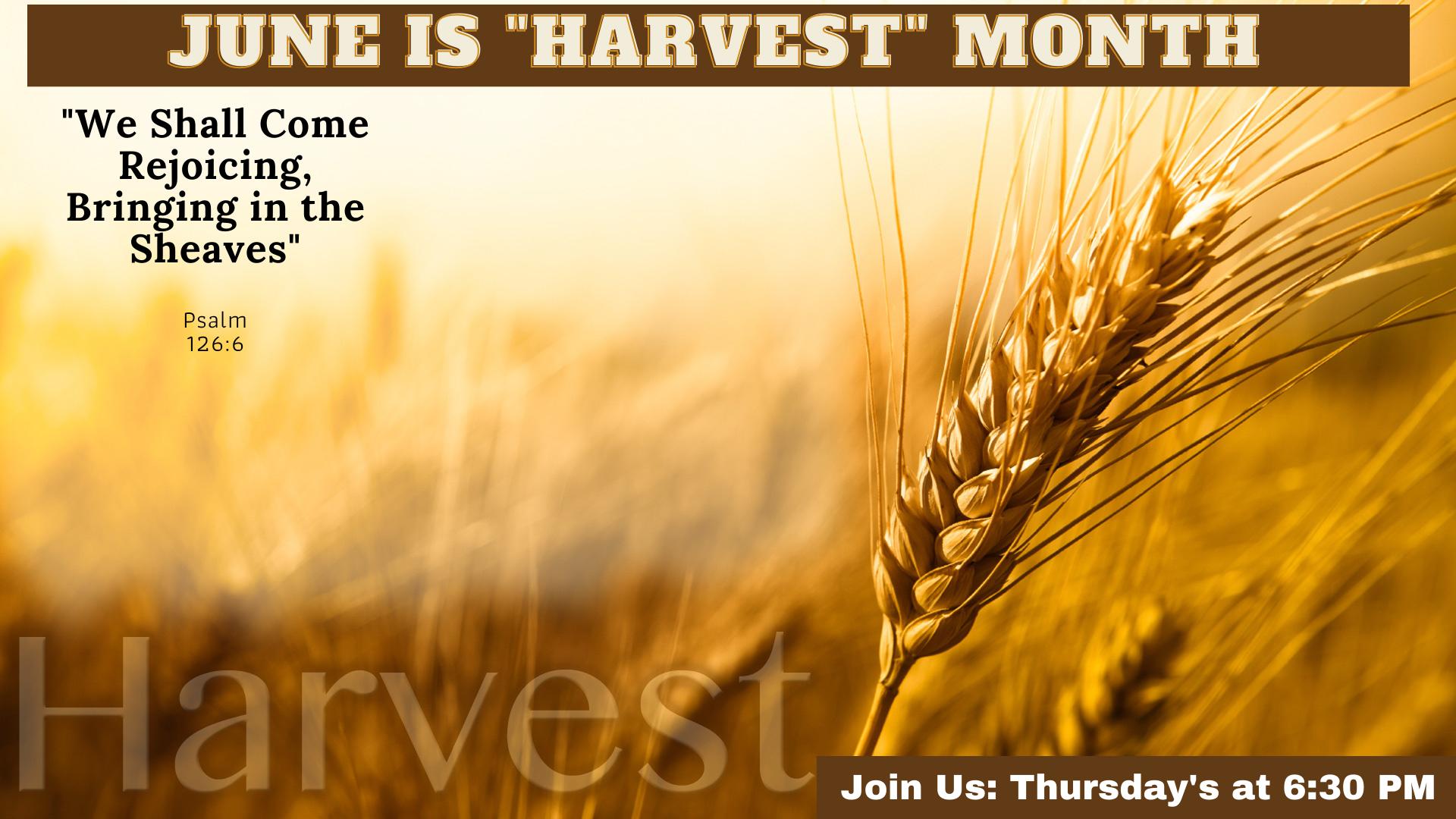 June 2021_Harvest